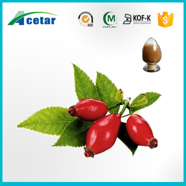 Rose fruit powder